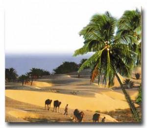 Ashab-ı Kiram'daki Rasulüllah sevgisi
