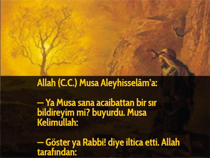 Allah (C.C.) Musa Aleyhisselâm'a:  — Ya Musa sana acaibattan bir sır bildireyim mi? buyurdu. Musa Kelimullah:  — Göster ya Rabbi! diye iltica etti. Allah tarafından: