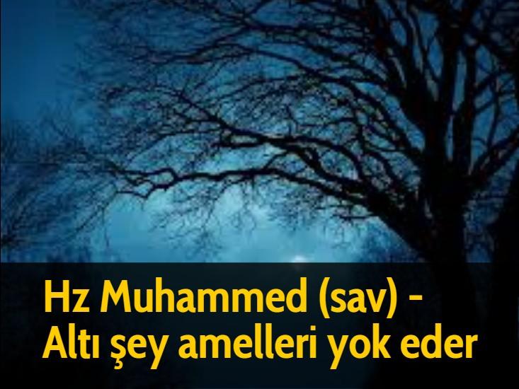 Hz Muhammed (sav) - Altı şey amelleri yok eder