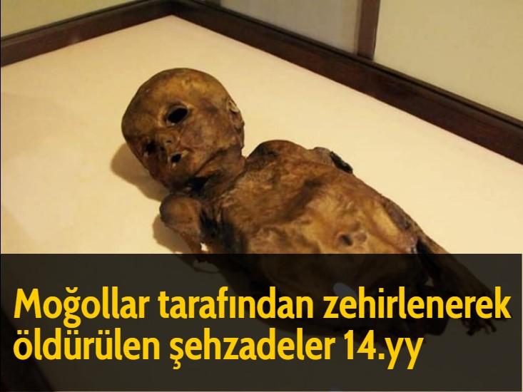 Moğollar tarafından zehirlenerek öldürülen şehzadeler  14.yy
