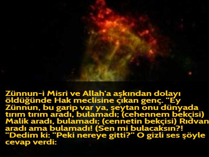 Zünnun-i Misri ve Allah'a aşkından dolayı öldüğünde Hak meclisine çıkan genç. ''Ey Zünnun, bu garip var ya, şeytan onu dünyada tırım tırım aradı, bulamadı; (cehennem bekçisi) Malik aradı, bulamadı; (cennetin bekçisi) Rıdvan aradı ama bulamadı! (Sen mi bulacaksın?! ''Dedim ki: ''Peki nereye gitti?'' O gizli ses şöyle cevap verdi: