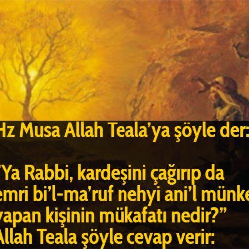 """Hz Musa Allah Teala'ya şöyle der:  """"Ya Rabbi, kardeşini çağırıp da emri bi'l-ma'ruf nehyi ani'l münker yapan kişinin mükafatı nedir?"""" Allah Teala şöyle cevap verir:"""