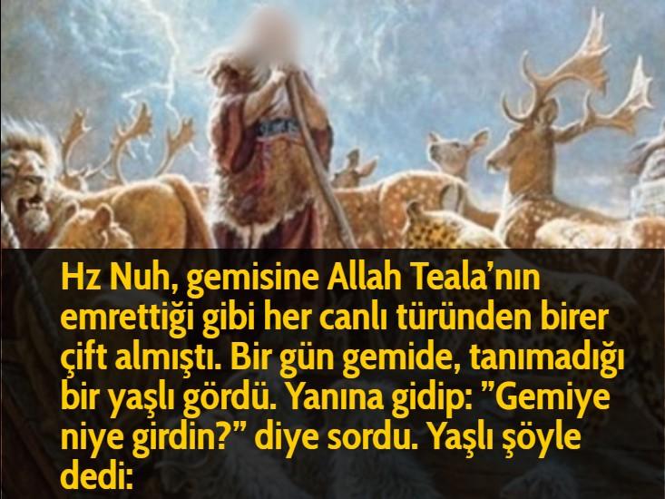 """Hz Nuh, gemisine Allah Teala'nın emrettiği gibi her canlı türünden birer çift almıştı. Bir gün gemide, tanımadığı bir yaşlı gördü. Yanına gidip: """"Gemiye niye girdin?"""" diye sordu. Yaşlı şöyle dedi:"""