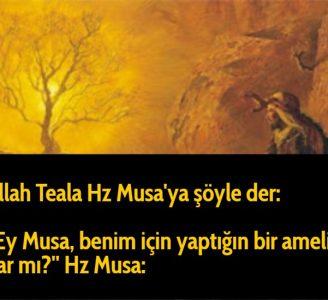 Allah Teala Hz Musa'ya şöyle der: ''Ey Musa, benim için yaptığın bir amelin var mı?'' Hz Musa:
