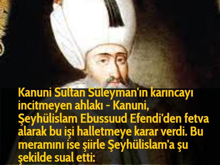 Kanuni Sultan Süleyman'ın karıncayı incitmeyen ahlakı - Kanuni, Şeyhülislam Ebussuud Efendi'den fetva alarak bu işi halletmeye karar verdi. Bu meramını ise şiirle Şeyhülislam'a şu şekilde sual etti: