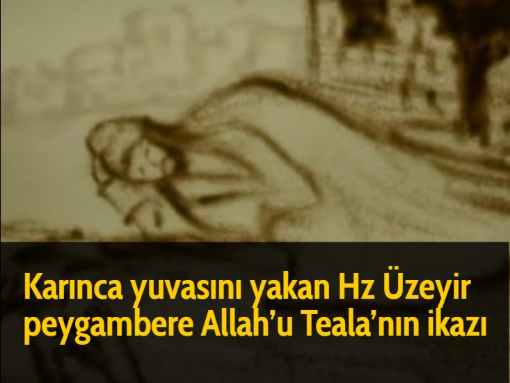 Karınca yuvasını yakan Hz Üzeyir peygambere Allah'u Teala'nın ikazı