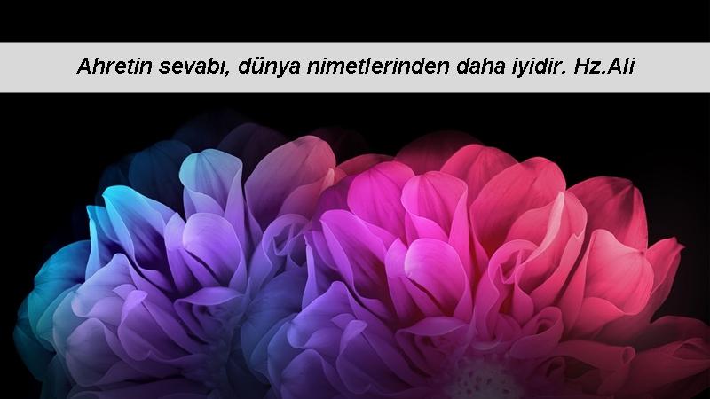 Hz Muhammed (sav) - Dört şey vardır ki ameli yedi yüze çıkartılır: