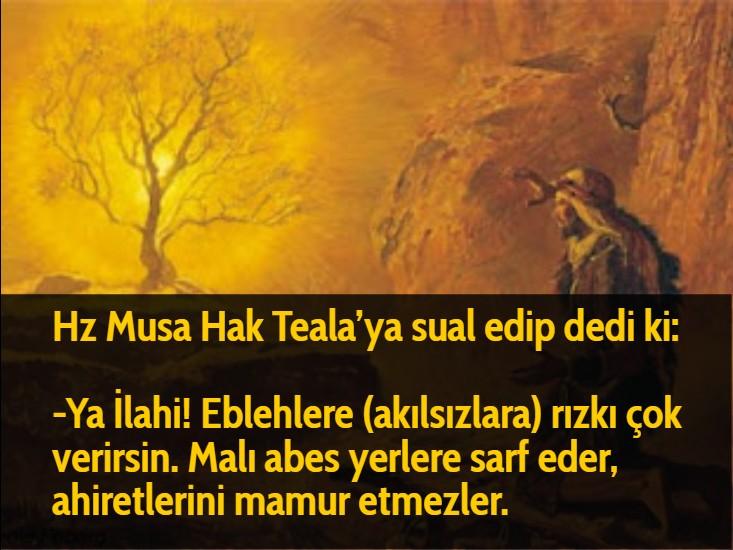 Hz Musa Hak Teala'ya sual edip dedi ki:  -Ya İlahi! Eblehlere (akılsızlara) rızkı çok verirsin. Malı abes yerlere sarf eder, ahiretlerini mamur etmezler.