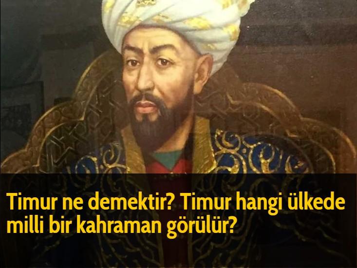 Timur ne demektir? Timur hangi ülkede milli bir kahraman görülür?