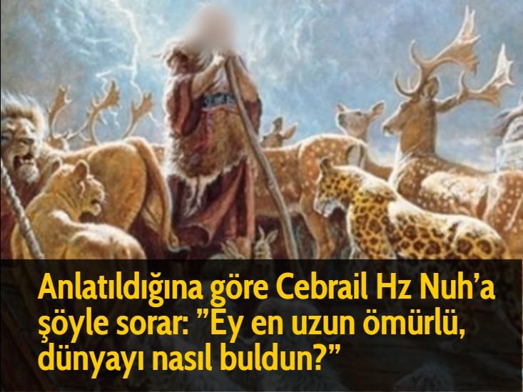 """Anlatıldığına göre Cebrail Hz Nuh'a şöyle sorar: """"Ey en uzun ömürlü, dünyayı nasıl buldun?"""""""