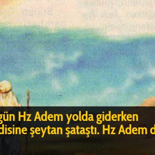 Bir gün Hz Adem yolda giderken kendisine şeytan şataştı. Hz Adem dedi ki: