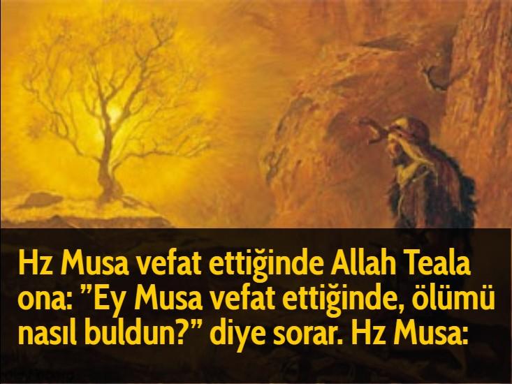 "Hz Musa vefat ettiğinde Allah Teala ona: ""Ey Musa vefat ettiğinde, ölümü nasıl buldun?"" diye sorar. Hz Musa:"