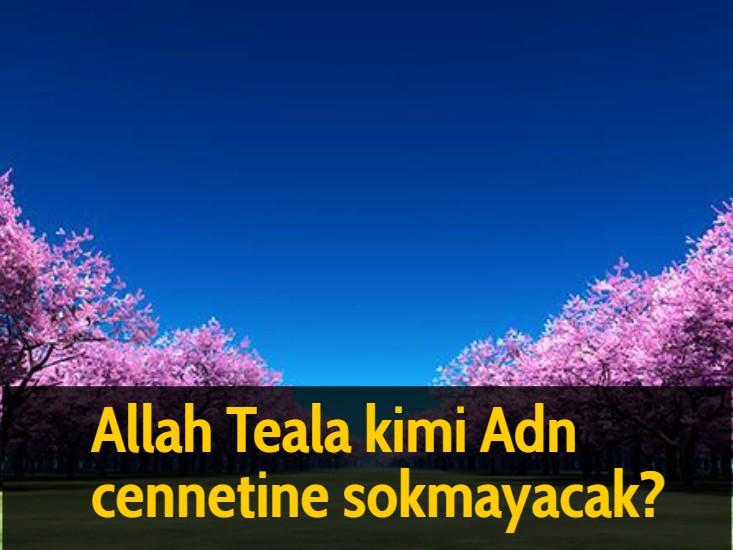 Allah Teala kimi Adn cennetine sokmayacak?