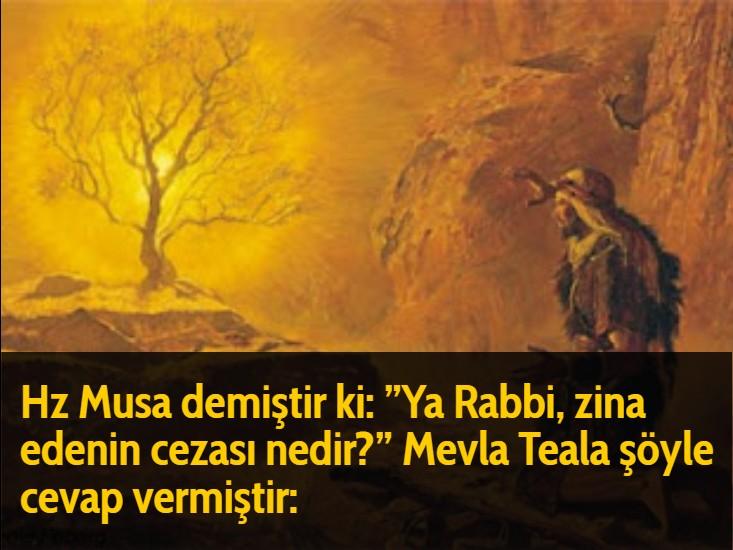 """Hz Musa demiştir ki: """"Ya Rabbi, zina edenin cezası nedir?"""" Mevla Teala şöyle cevap vermiştir:"""