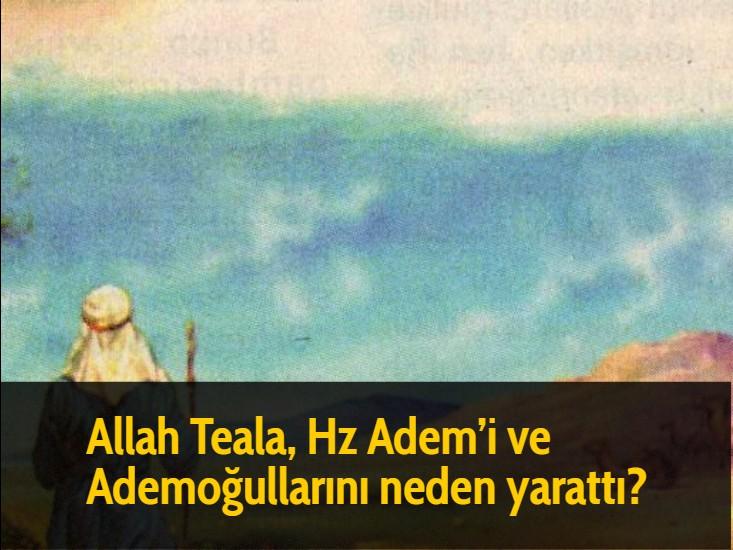 Allah Teala, Hz Adem'i ve Ademoğullarını neden yarattı?