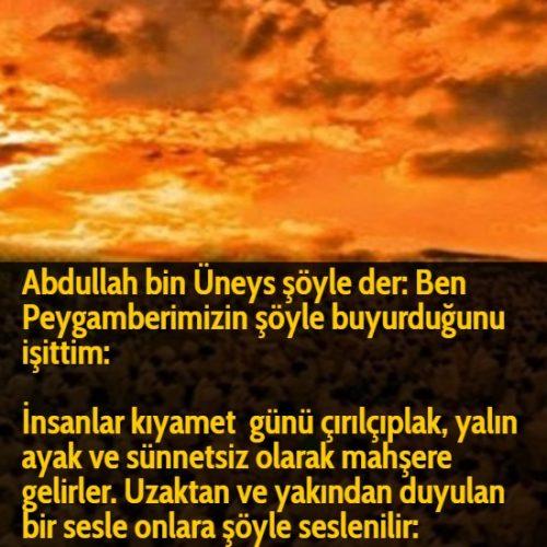 Abdullah bin Üneys şöyle der: Ben Peygamberimizin şöyle buyurduğunu işittim:  İnsanlar kıyamet günü çırılçıplak, yalın ayak ve sünnetsiz olarak mahşere gelirler. Uzaktan ve yakından duyulan bir sesle onlara şöyle seslenilir: