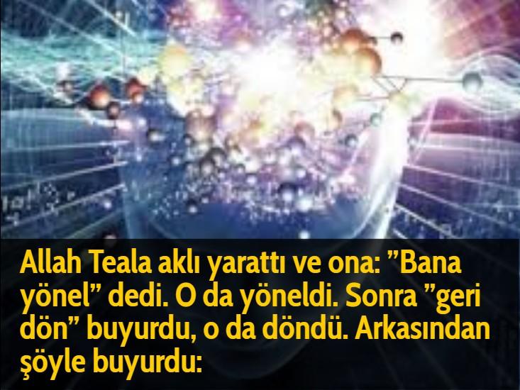 """Allah Teala aklı yarattı ve ona: """"Bana yönel"""" dedi. O da yöneldi. Sonra """"geri dön"""" buyurdu, o da döndü. Arkasından şöyle buyurdu:"""
