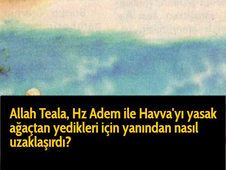 Allah Teala, Hz Adem ile Havva'yı yasak ağaçtan yedikleri için yanından nasıl uzaklaşırdı? Çünkü Adem azaba uğrayacağını sanmaktaydı. Başını önüne eğip:  -'Af, af!' dedi. Allah da:  -'Benden kaçıyor musun?' dedi. Adem: