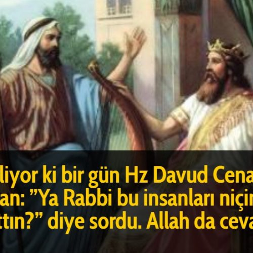 Deniliyor ki bir gün Hz Davud Cenab-ı Haktan: ''Ya Rabbi bu insanları niçin yarattın?'' diye sordu. Allah da cevaben: