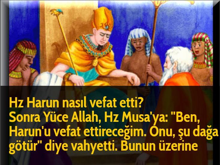 Hz Harun nasıl vefat etti? Sonra Yüce Allah, Hz Musa'ya: ''Ben, Harun'u vefat ettireceğim. Onu, şu dağa götür'' diye vahyetti. Bunun üzerine