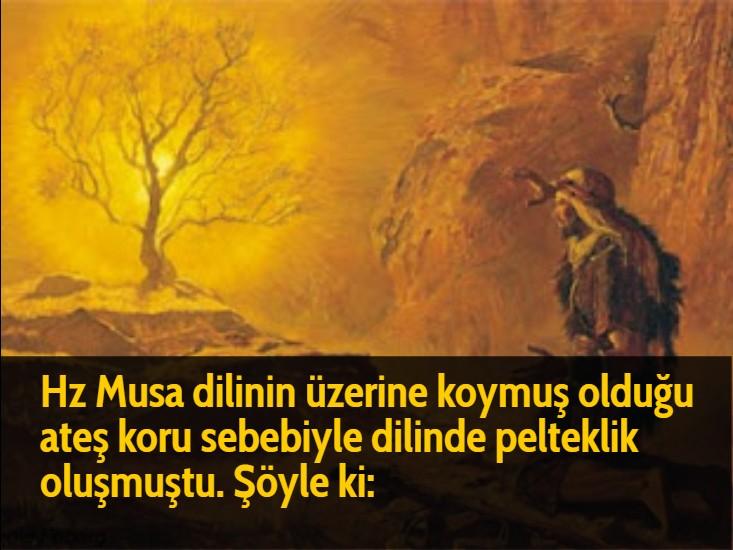 Hz Musa dilinin üzerine koymuş olduğu ateş koru sebebiyle dilinde pelteklik oluşmuştu. Şöyle ki: