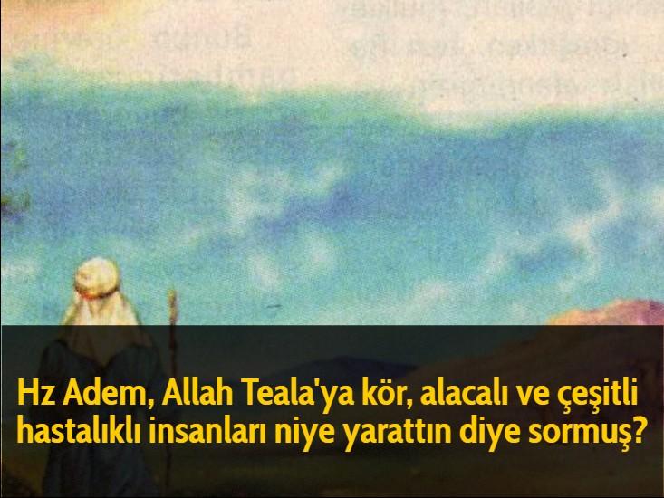 Hz Adem, Allah Teala'ya kör, alacalı ve çeşitli hastalıklı insanları niye yarattın diye sormuş?