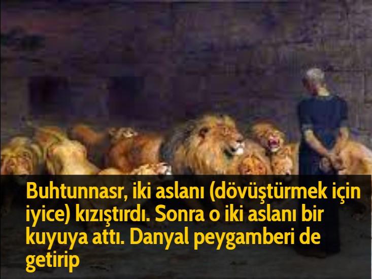 Buhtunnasr, iki aslanı (dövüştürmek için iyice) kızıştırdı. Sonra o iki aslanı bir kuyuya attı. Danyal peygamberi de getirip