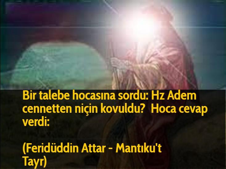Bir talebe hocasına sordu: Hz Adem cennetten niçin kovuldu?  Hoca cevap verdi: (Feridüddin Attar - Mantıku't Tayr)